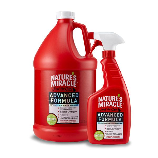 For those BIG accidents! - Advanced Pet Odor Stain Remover Best Pet Stain Carpet Cleaner Clean Up Dog Vomit - Nature's Miracle