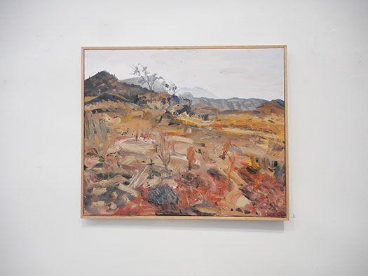 Steve Lopes 'Outsider' Exhibition