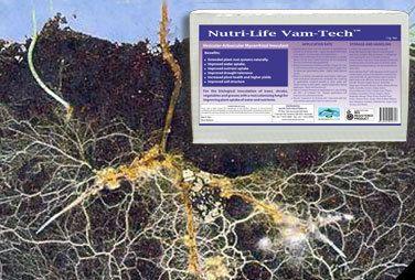 Nutri Life VAM Tech Price : AU$104.50 (inc GST) AU$95.00 (exc GST)