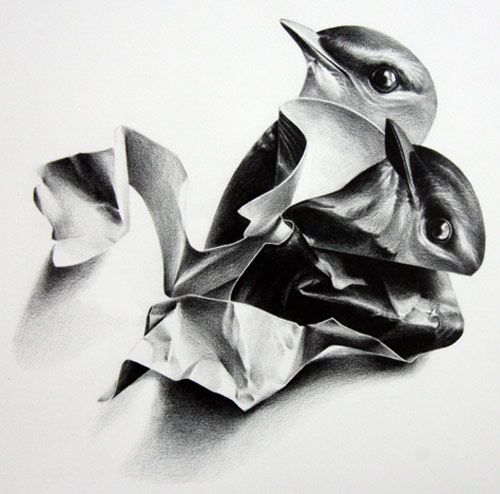 Drawings by artist Christina Empedocles