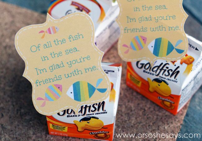 I love goldfish I even brought it for my Birthday treat