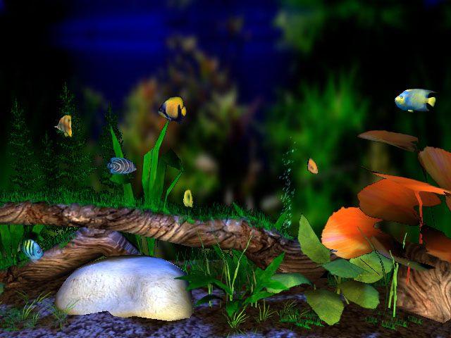 Free 3D Aquarium Screensaver | 3D Bungalow Aquarium Screensaver Screenshots