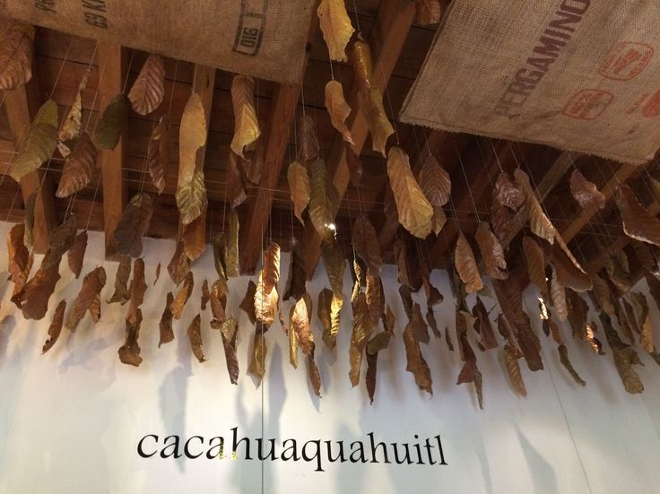 Blog post at Chocolatour with Doreen Pendgracs   Chocolate Adventurist and Wizard of Words : Thanks to a tip from a wonderful server at Las Alcobas boutique hotel in Mexico City, I was able to discover the MUCHO Museo del Chocolate w[..]