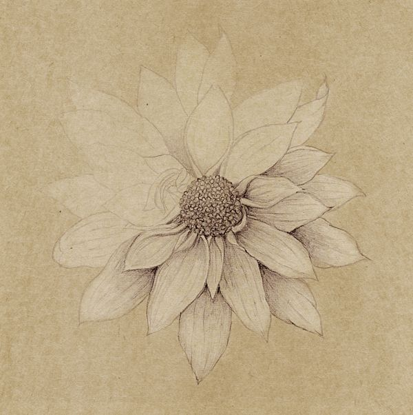 Botanical Art by Diana Ziv, via Behance