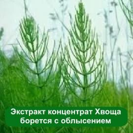 Жидкий экстракт концентрат из полевого Хвоща для укрепляющих составов для волос и ногтей. Профилактика облысения. Антивозрастной уход