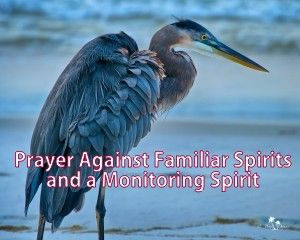 This is a prayer against familiar spirits and monitoring spirits http://www.missionariesofprayer.org/2015/04/prayer-against-a-familiar-spirit-and-monitoring-spirits/