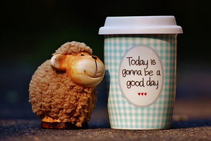 Gondolkodj pozitívan! – Mit is értünk ez alatt? - Szeretnéd derűsebben látni a világot? A pozitív gondolkodásra való átállás által rövid idő alatt is jobb életminőséget érhetünk el...ha tudjuk, hogyan alkalmazzuk hatékonyan!