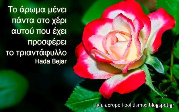 Το άρωμα μένει πάντα στο χέρι αυτού που έχει προσφέρει το τριαντάφυλλο - ΝΕΑ ΑΚΡΟΠΟΛΗ - ΡΗΤΑ ΓΙΑ ΤΗ ΓΕΝΝΑΙΟΔΩΡΙΑ