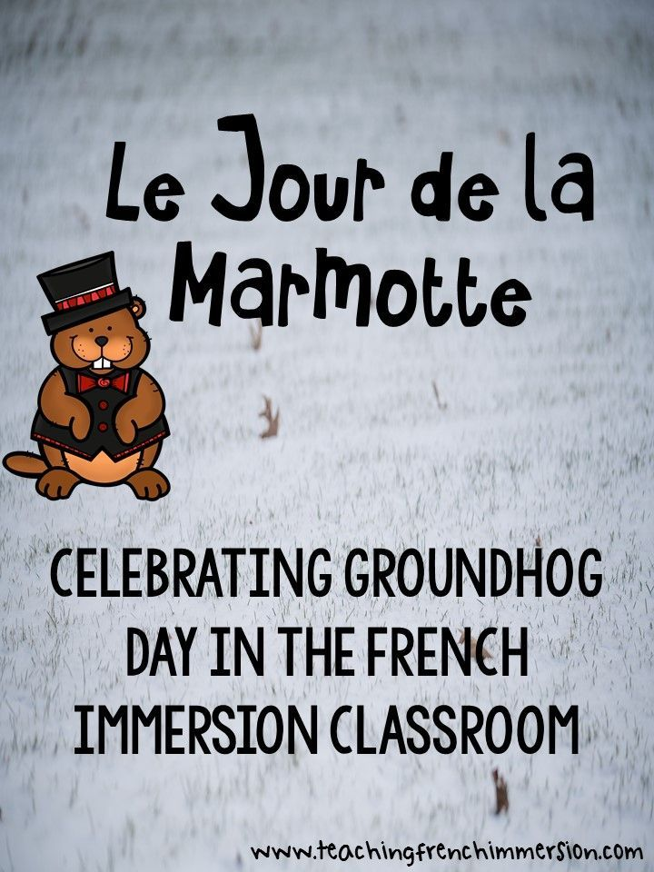 Le jour de la marmotte! Celebrating Groundhog Day in French. This blog post has some great ideas!