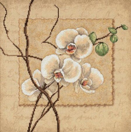 Amazon.com: Dimensions Needlecrafts Counted Cross Stitch, Oriental Orchids: Arts, Crafts & Sewing