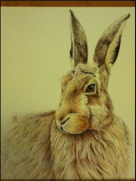 "This Harry the Hare, recently made into cards and prints. The painting's name is ""Saudade"" which means a melancholy pining.  www.wildhoneyart.co.nz"