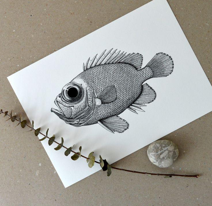 Mořská ryba - I