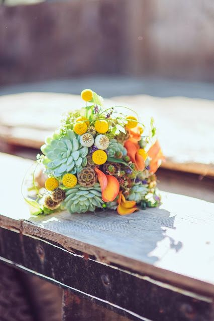 """""""slow"""" flowers - stunning bridal bouquet - lots of textures featuring sedum, succulents, craspedia, hops, scabiosa seed pods, calla lily, blackberries, sweet pea"""
