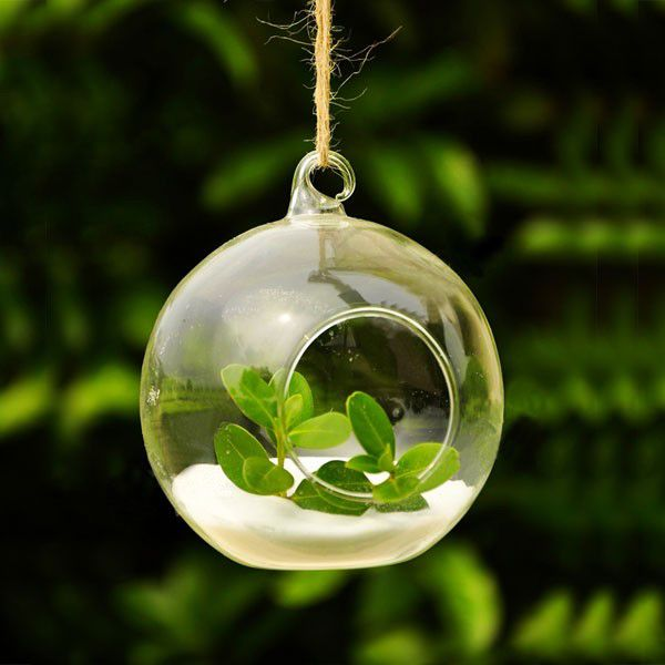 Hot sale 8 pcs/ lot Borosilicate Glass Hanging Vase & Tabletop Vase Decoration - Transparent Diameter = 6 cm $19.96