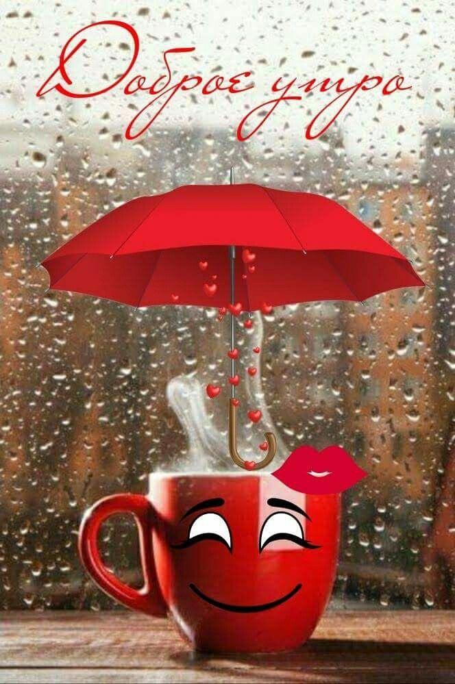 впервые картинки доброе утро хорошей погоды без дождика рассмотренных ранее зубчатых