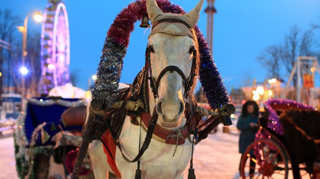 Winterville | Victoria Park | Markets and fairs | Time Out London