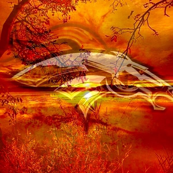 It's a Broncos Day! Beat the Chargers!! Go Broncos!! 2016