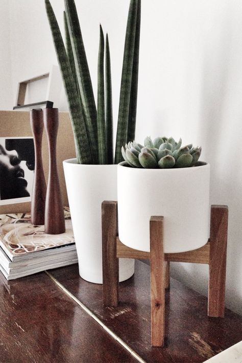 Die besten 25+ hohe Pflanzenstände Ideen auf Pinterest diy - indoor garten wohlfuhloase wohnung begrunen