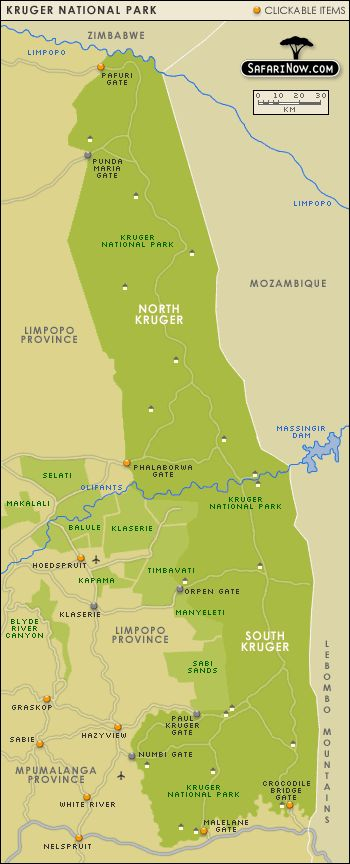 132 best Kruger National Park images on Pinterest  Kruger