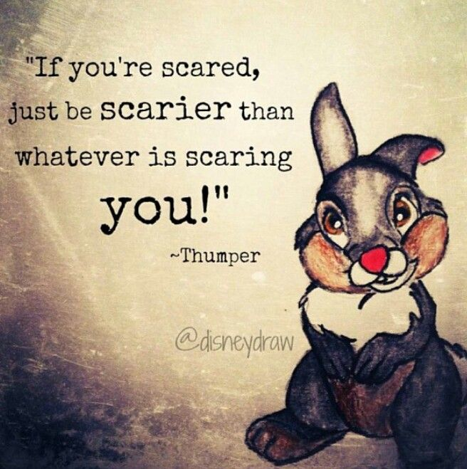 Love this quote :). Thumper ♥
