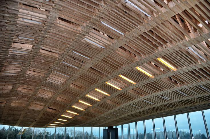 Holz und Kautschuk, eine wunderbare Kombination. ETH in Zürich, sicht von unten. /// Bois et caoutchouc, une merveilleuse combinaison. EPF de Zurich, vue de dessous