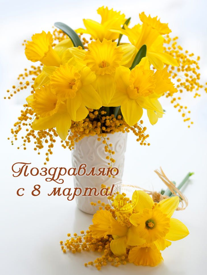 8 марта открытки с мимозами, открытка