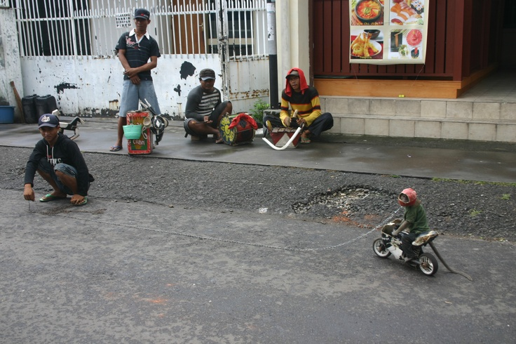 Somewhere in Jakarta a monkey was riding a motorbike, luckily he was wearing a helmet...