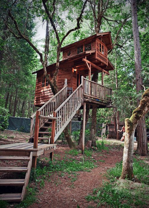 Serendipitree Tree House. It is one of many wonderful tree houses available for accommodation at Out'n'About resort. It took several years to figure out how to make it a good fit for two adults and...