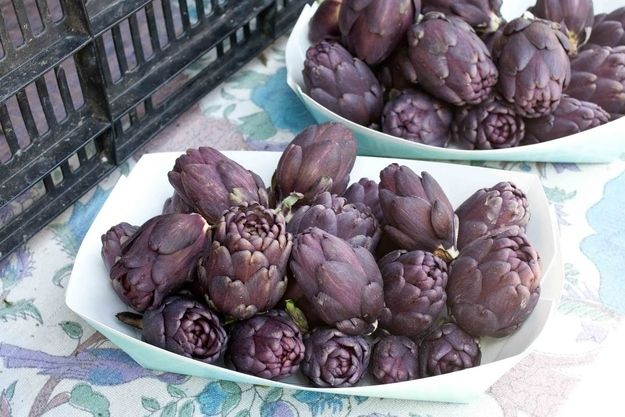Artichoke | Purple Versions Of Your Favorite Non-Purple Vegetables