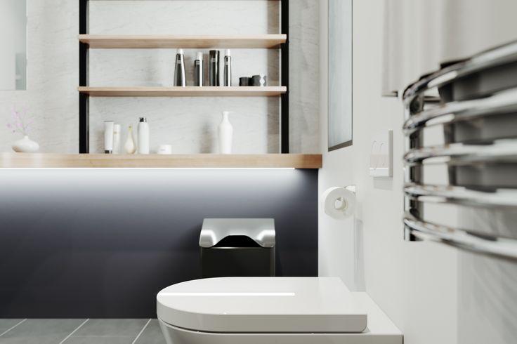 Bathroom Viz