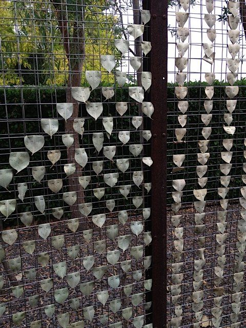 Eucalyptus leaves used to make a sort of screen.