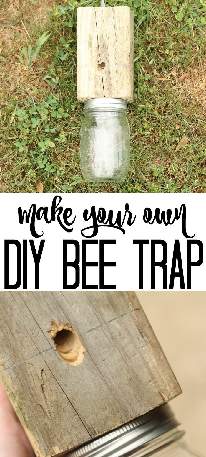 Learn How To Make Your Own Carpenter Bee Trap Bee Traps Mason