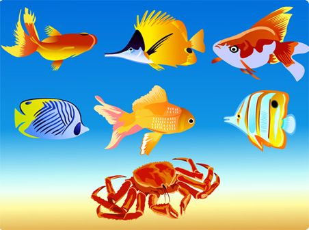 Google Image Result for http://www.freevectordownload.com/site-images/Large/Vector_Fish_01_452.jpg