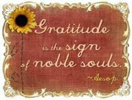 Gratitude--being more grateful every day.