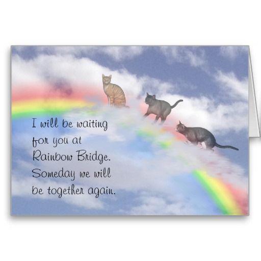 Free Print Rainbow Bridge for cats | Cats Waiting At Rainbow Bridge Greeting Card