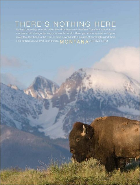 Montana Tourism- 2010 Print Ad, Mission Mountain Bison by MTOTConsMktg, via Flickr