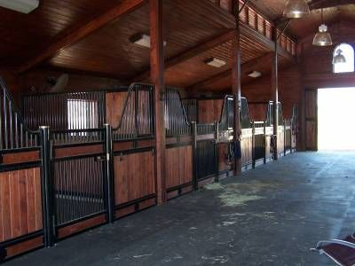 Dream Stables!