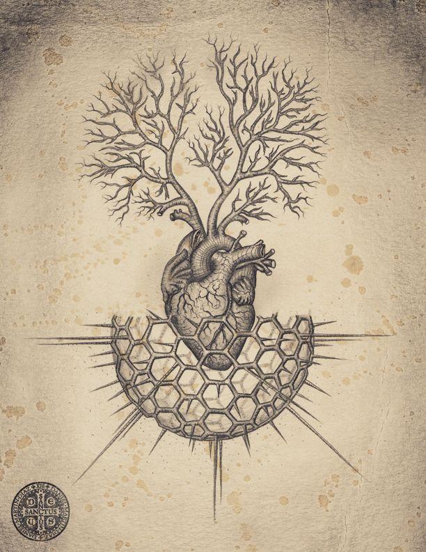 Daniel Martin Diaz / Soul of Science / sacred geometry / heart / Anatomical <3