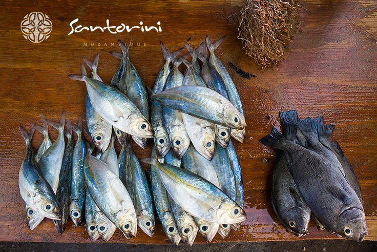 Picking up some lunch #santorini #mozambique #vilanculos #bazaruto