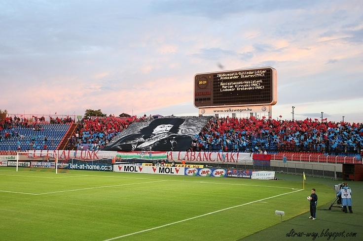 Videoton FC  supporters