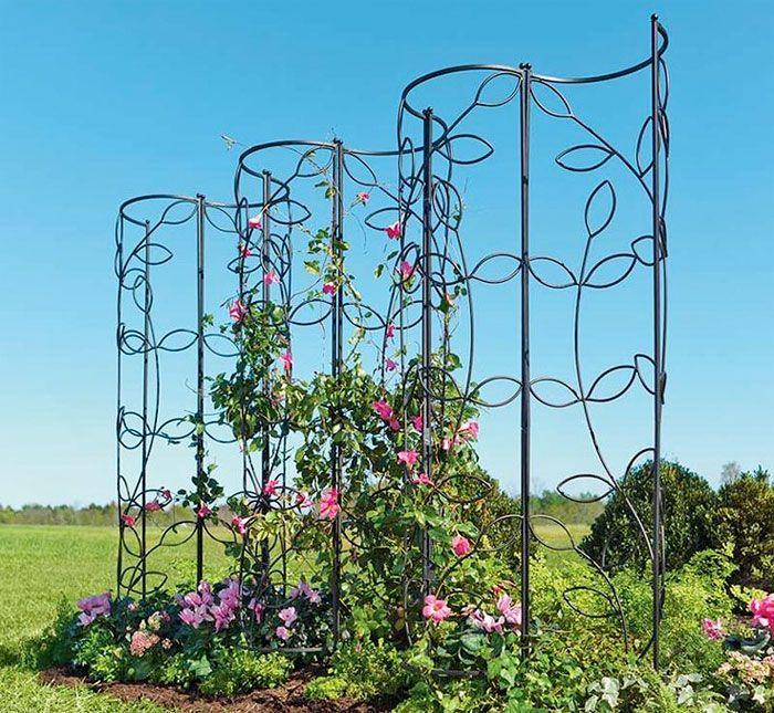18 spaljéer och väggar som skapar rum i trädgården