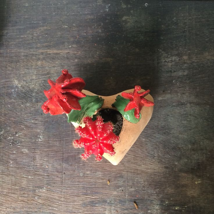 #8#cuoredicactus #ceramicacti #handmadeinitaly #madeinitaly #zanellazine