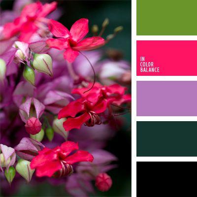 color amatista, color fucsia, color malva, color verde oscuro, colores contrastantes, combinación de colores para decorar interiores, combinaciones de colores, de color malva, elección del color, selección de colores para el diseño de interiores, verde manzana.