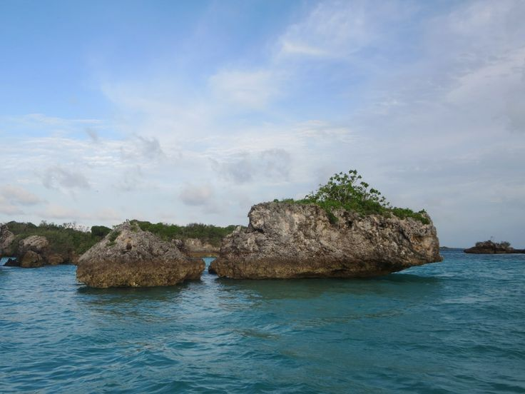 Fossilised coral islands poke out of the lagoon at Aldabra Atoll in the Seychelles.