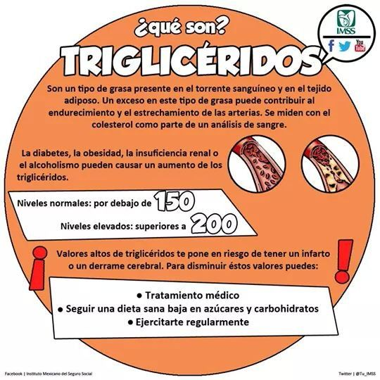 1000 images about trigliceridos on pinterest salud tips and blog - Alimentos bajar trigliceridos ...
