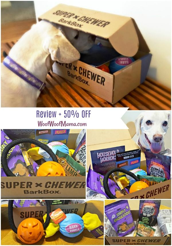 Super Chewer Barkbox For Toy Destroyers Durable Dog Toys Dog