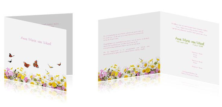#Kleurrijke #rouwkaart met een #afbeelding van #veldbloemen en #vlinders, #lente. Wist u dat u kunt alle #ontwerpen naar uw zin kunt #aanpassen? U kunt ook #eigenfoto's toevoegen, items weglaten, kleuren aanpassen... We denken graag met u mee. Mailt of belt u ons voor persoonlijk advies via info@daglief.nl of 010 511 33 40 (tijdens kantooruren).