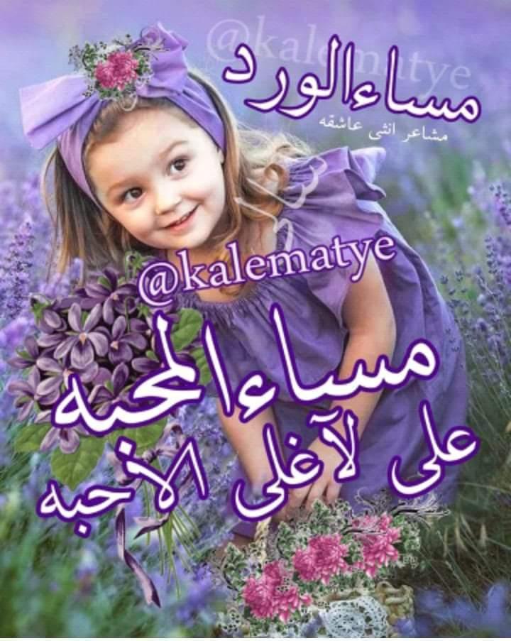 مساء المحبة Good Morning Photos Evening Greetings Good Morning Images