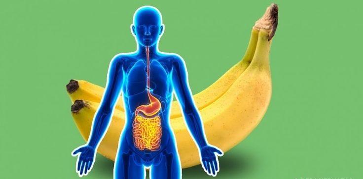 Väčšinu ľudí od zdravého stravovania odrádza predsudok, že zdraviu prospešné jedlá nie sú chutné. To však absolútne neplatí obanánoch, ktoré majú na naše zdravie veľmi pozitívny vplyv. Ich konzumáciou potešíte nie len svoje chuťové poháriky ale itelo. Prinášame vám nasledujúce fakty, oktorých ste možno ani netušili. Už samotnou konzumáciou dvoch banánov denne si môžete výrazne …