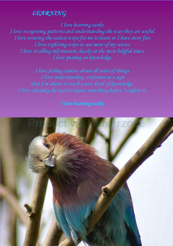 Learning affirmations with lilac breasted roller (song bird from Africa) Posters and e-books available. contact jentiller@realityquest.co.uk